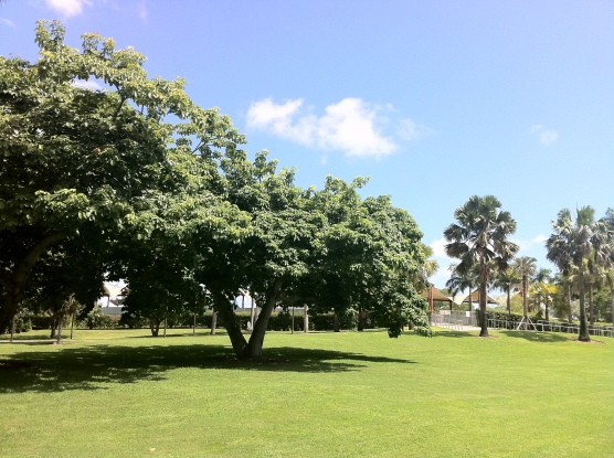 Bayfront Park, Miami FL - HDR